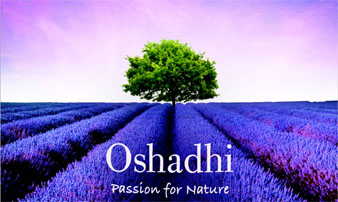 Oshadhi Essential Oils